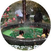 浙江清園旅游發展集團有限公司